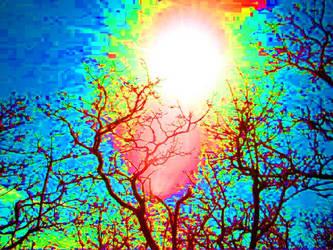 LSD by RipRoaringReverend