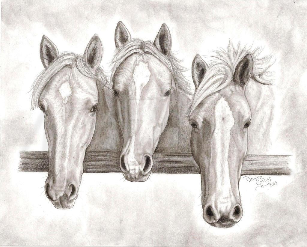 3 horse sketch by FlyingFancy1