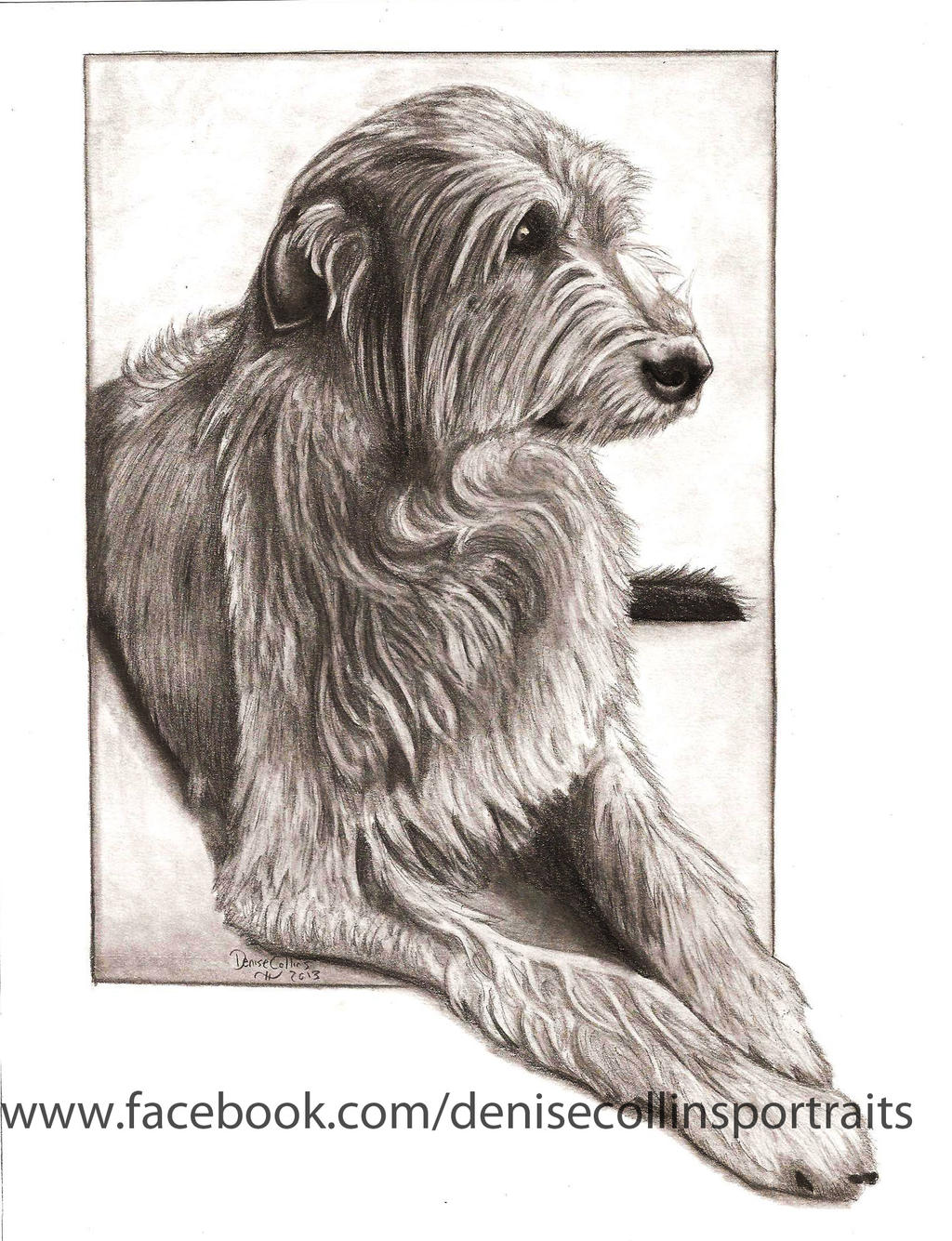 Irish Wolfhound by FlyingFancy1