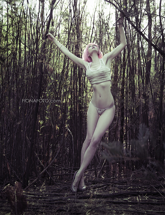 the WOODS by fionafoto