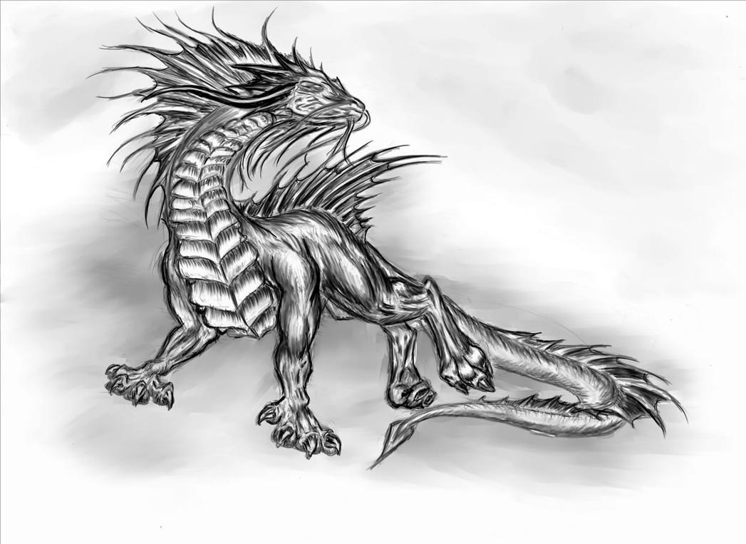 If I were a dragon ... I would look like this .. - Page 38 Different_dragon_type_sketch