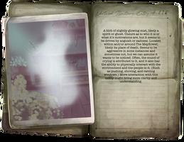 Mayflower Ghost
