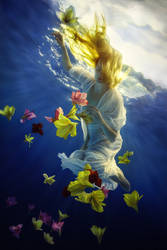 Flower Fantasy by fly10