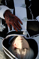 D.Gray-man: Innocent Sorrow