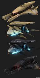 Future Human Spaceship