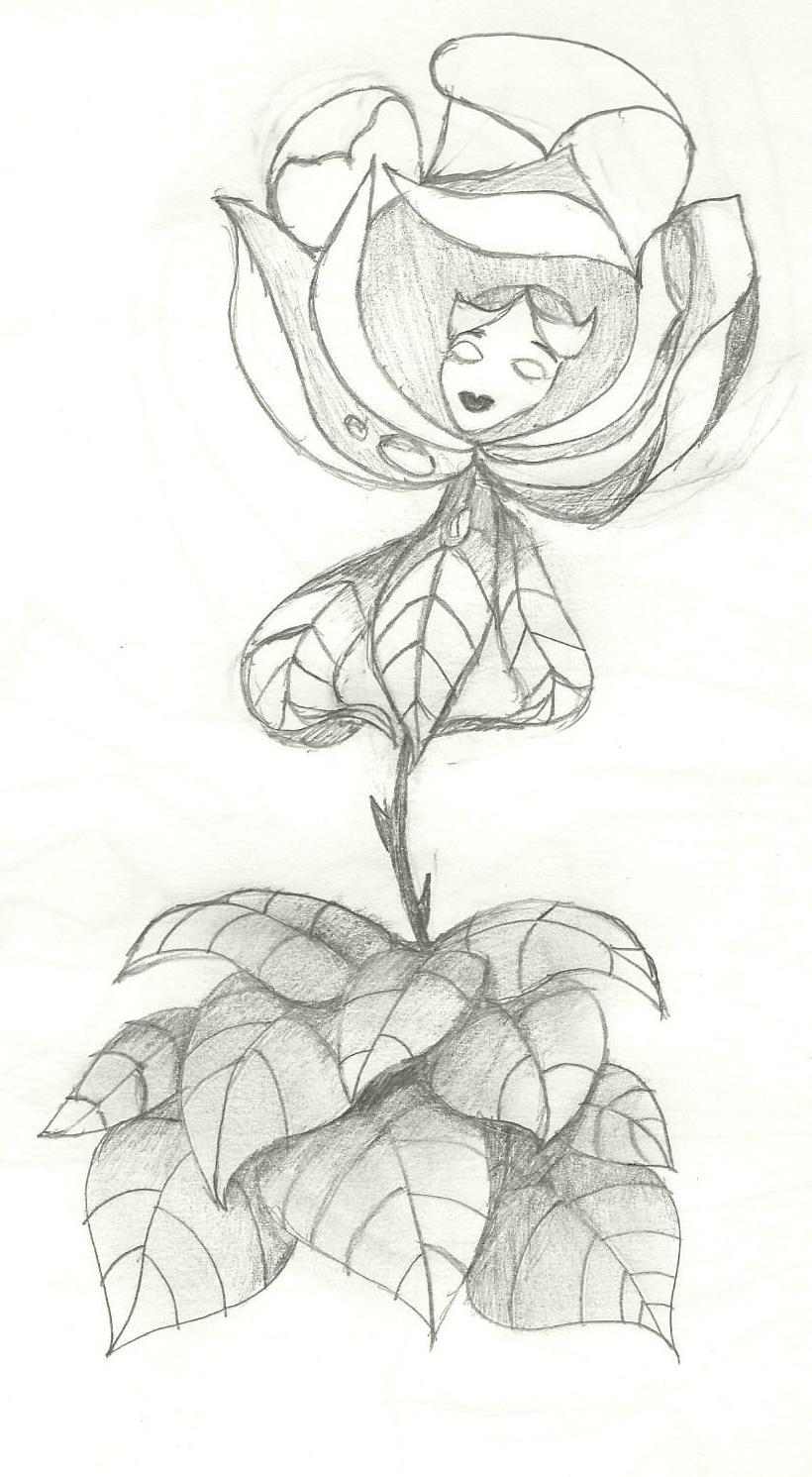 The White Rose Alice In Wonderland By Painting Roses Black On Deviantart