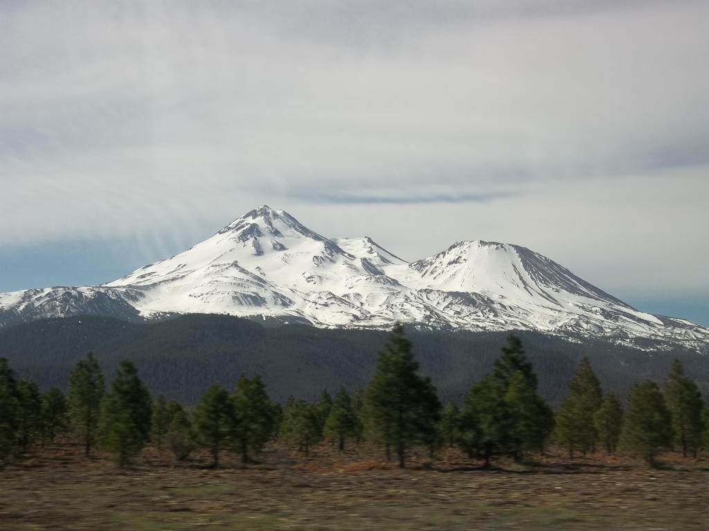 mount shasta jewish dating site The klamath river and its drainages have long been of interest in terms of fisheries and fishing multiple sites along the klamath river near the current hatchery site have been used as egg.