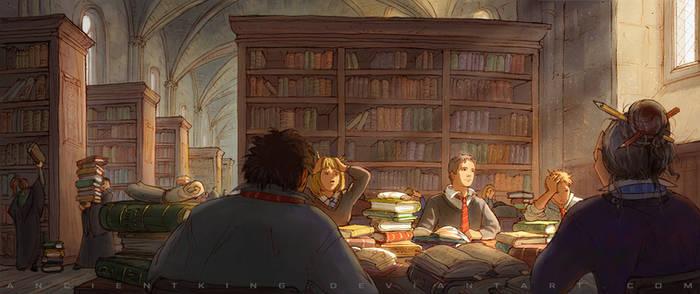 Thinking of Quidditch