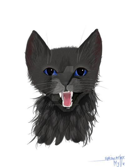 Black cat. Nightfur by katzendiosa