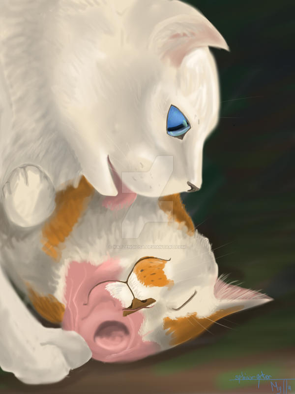 Cloudtail and Brightheart by katzendiosa