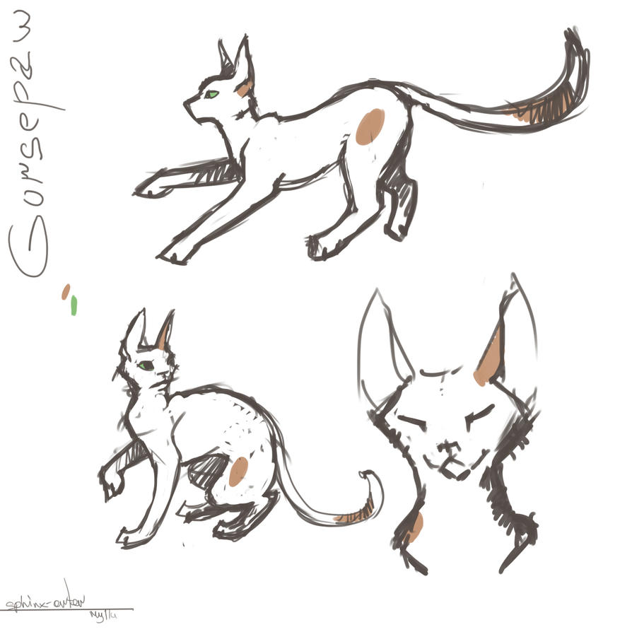 Some Gorsepaw sketches by katzendiosa
