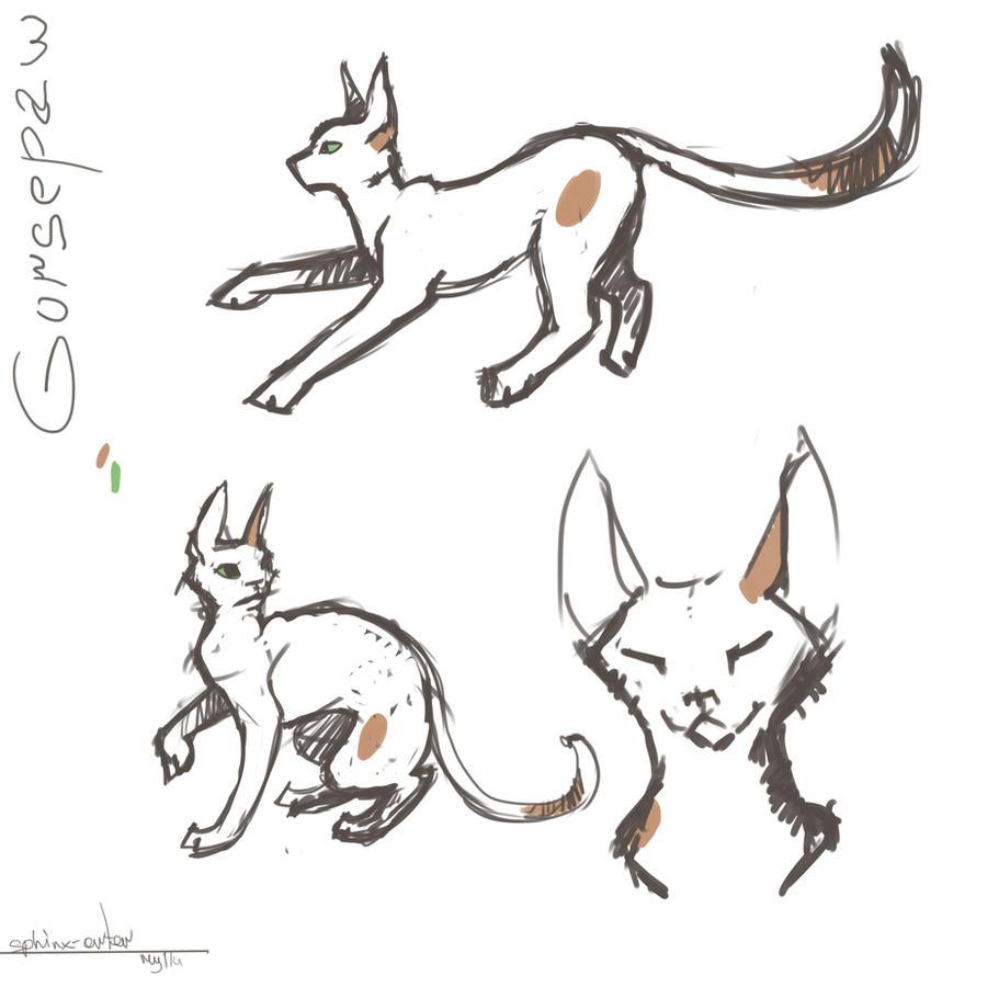 Some Gorsepaw sketches by katzendiosa