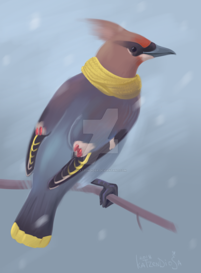 Waxwing with a scarf by katzendiosa