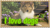 I love dogs stamp by Ice-In-Heart