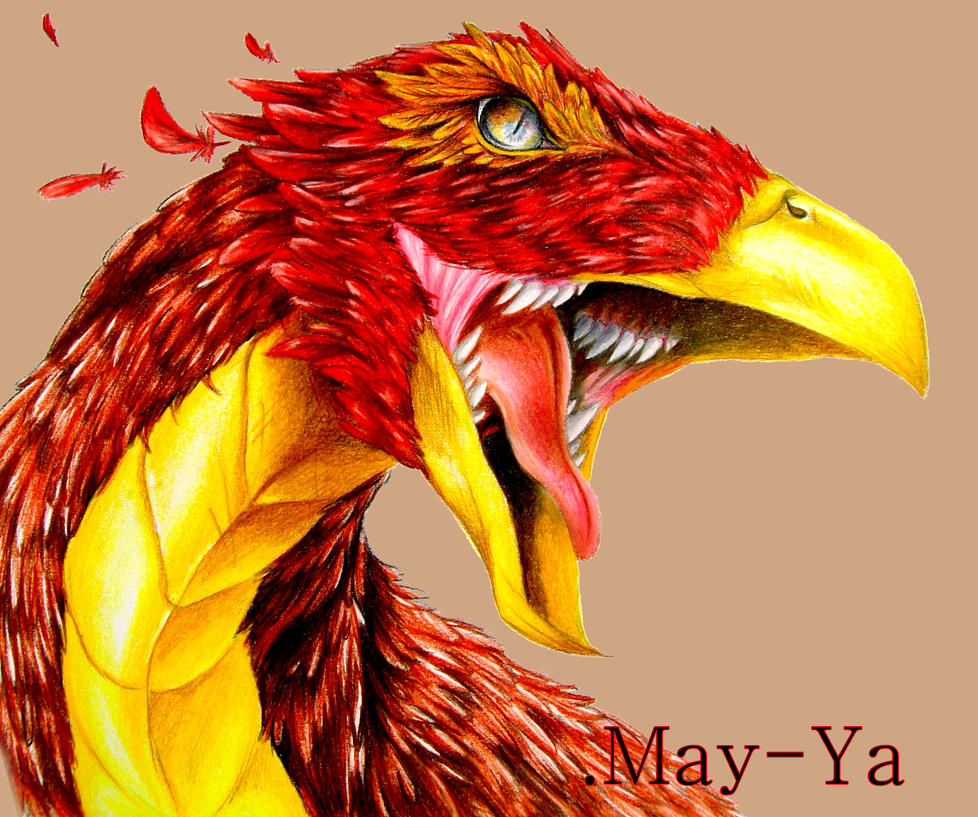 Birdfire Headshot to Blueyescyberdustdrag by May-Ya