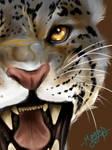 Roar With Me