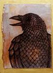 Talking Raven