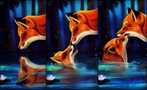 Foxes's love by Das-Leben