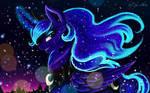 Luna meets the Winter night
