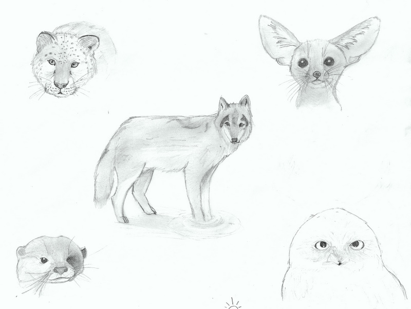 Old animal sketches by Sanhanian