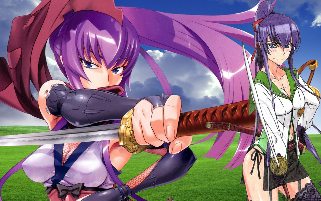 Saeko Busujima 2016 Wallpaper HD By Zaulxd