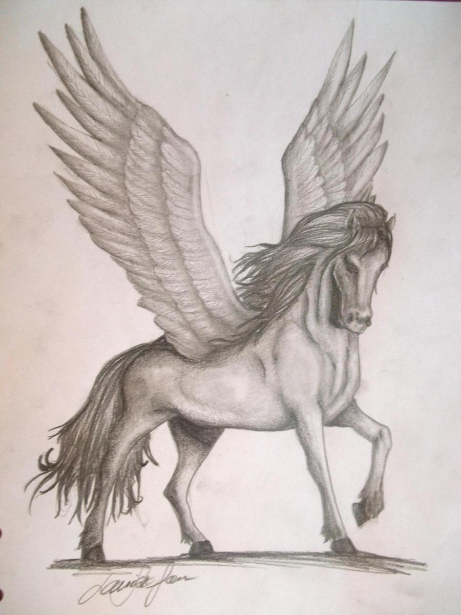 Uncategorized Drawings Of Pegasus pegasus by lollopopi on deviantart lollopopi