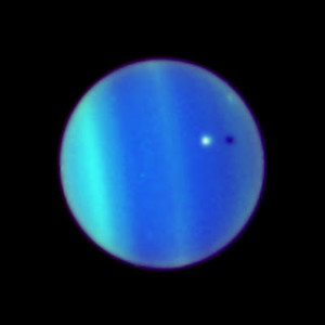 mileenasexy123's Profile Picture