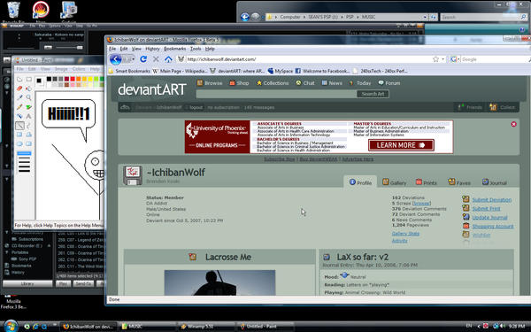 screen capture test by ichibanwolf on deviantart. Black Bedroom Furniture Sets. Home Design Ideas
