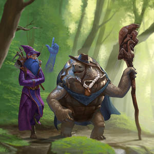 High Elf Wizard and Tortle Druid