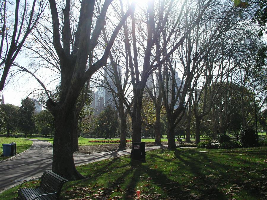 Pathfinder Park by Sinisterai