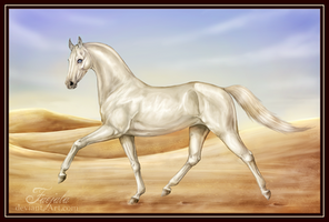 Princess of Dunes by Faejala