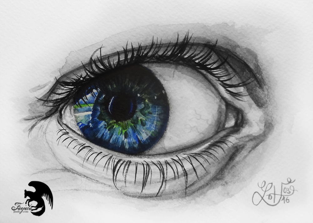 the human eye essay The human eye is an amazing organ webmd explains how it works.