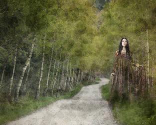 Spirit Path by crimsonvermillion