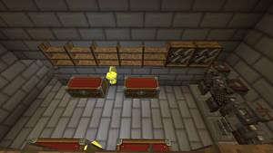 Interior Storage Room Basement