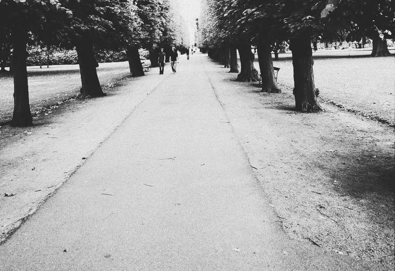 long long walk by nutella7