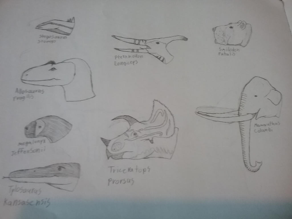 State Fossil  by DedeDinoPixel