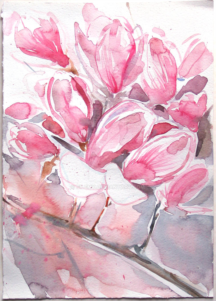 Pink Magnolia- watercolor painting by pilemy