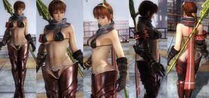 Kasumi Bikini Armor