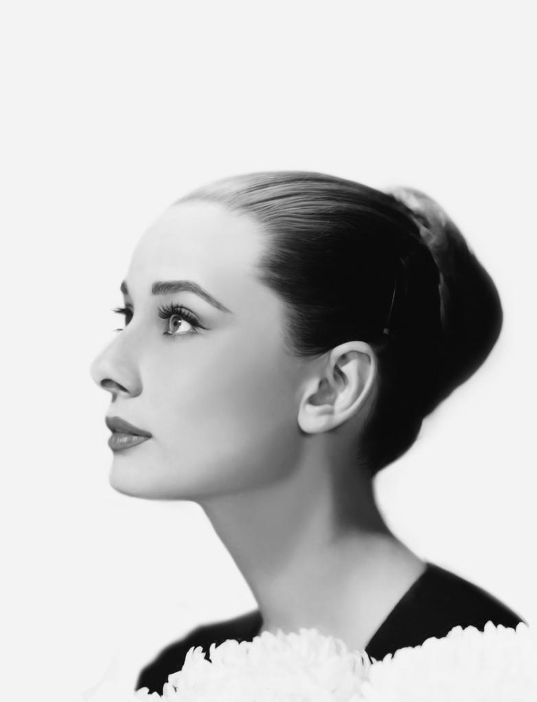 Audrey Hepburn Digital Portrait by vannenov