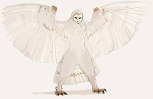 Alternate Harpy Design by Chopstuff