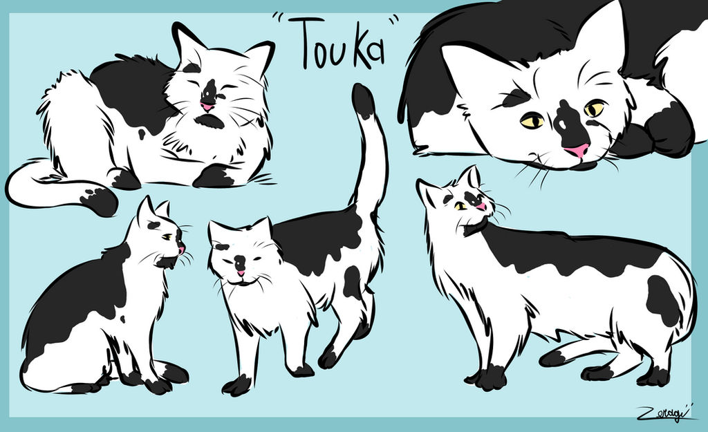 Touka - From War Crimes by Zeragii