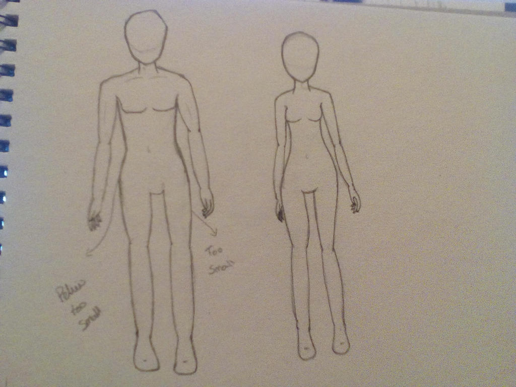 Male/Female proportion practice by CelestialSmudjy