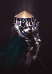 Robot Wanderer