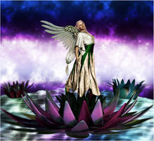 Angel of the Lotus