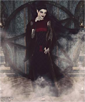 Beautiful Black Widow