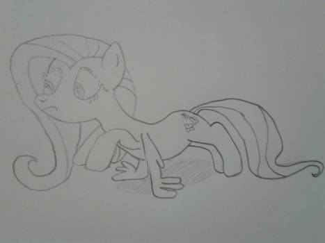 Fluttershy Training ATG D3