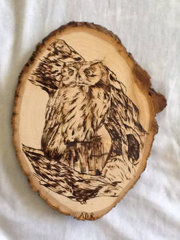 My First Pyrography