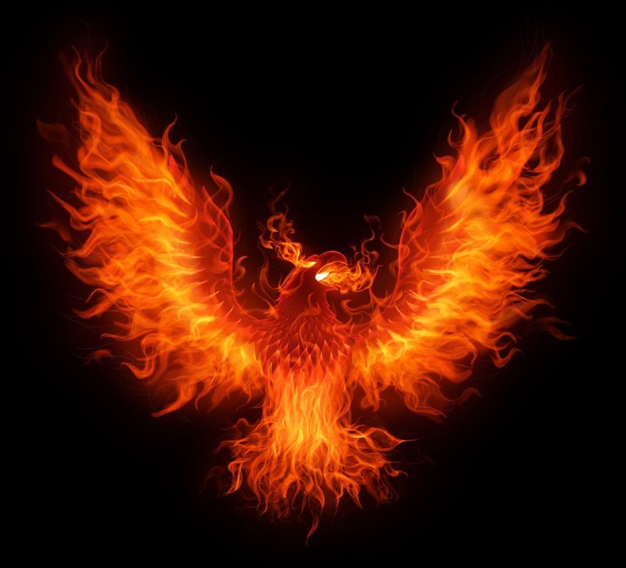 Firebird by superhawkins