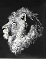 Lion by Cul2Lz
