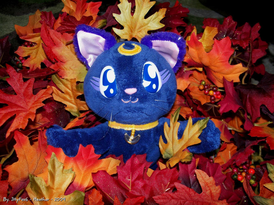 Luna Playing in the Leaves by IttyFox6